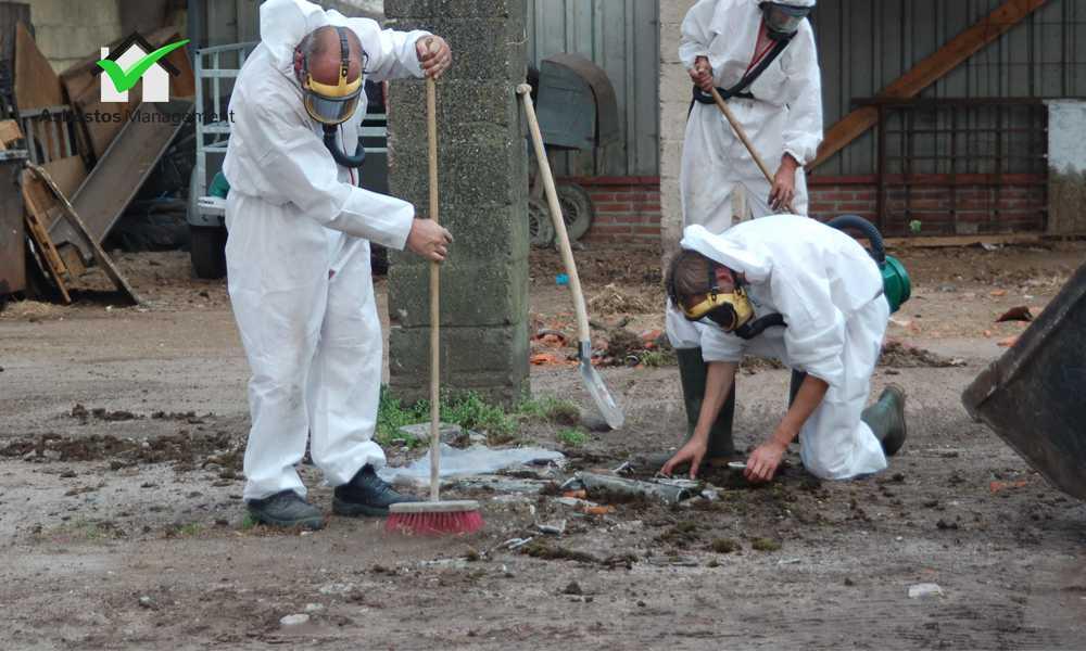 Asbestos soil Cleanup